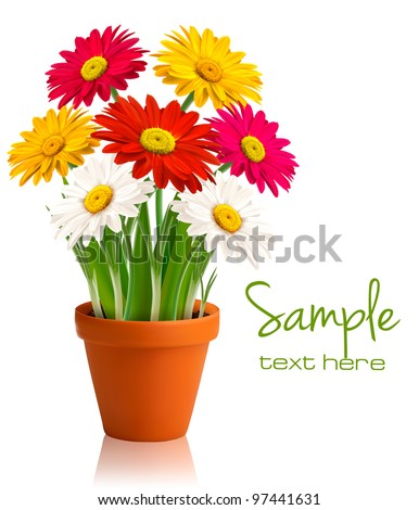 Fresh spring color flowers. Vector illustration. - stock vector