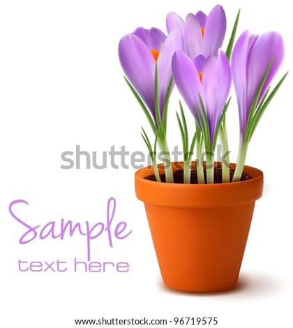 Fresh spring flowers. Easter background. Vector illustration. - stock vector