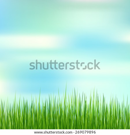 Fresh spring green grass on blue sky background. Beauty natural background  - stock vector