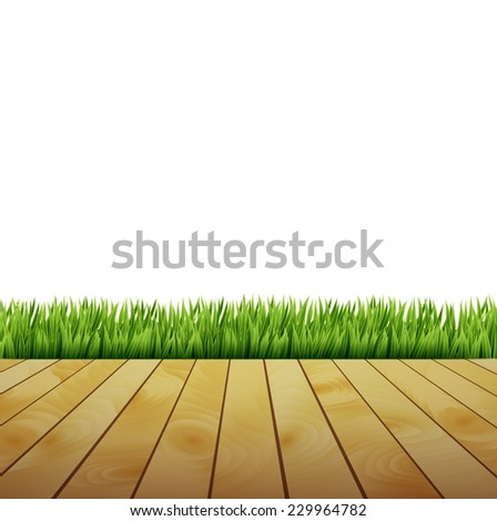 Fresh spring green grass with white background - stock vector