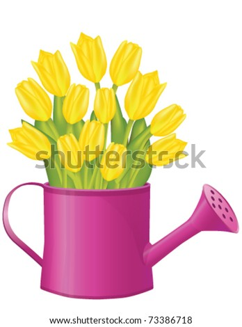 Fresh spring tulips in bucket - stock vector