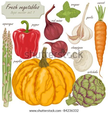Fresh vector vegetables - stock vector