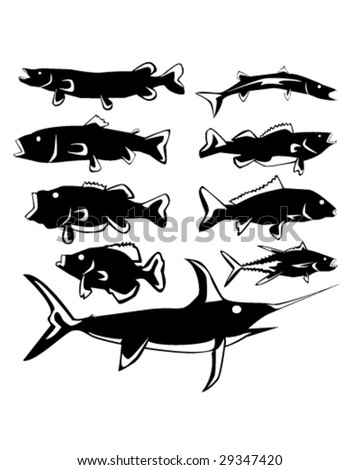 Freshwater and saltwater fish in vector silhouette with stylized illustration - stock vector