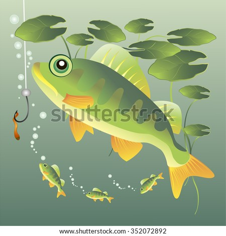 Freshwater fish in underwater habitat. Vector illustration. - stock vector
