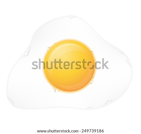 fried egg vector illustration isolated on white background