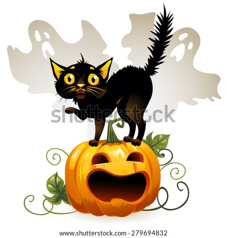 Frightened cat black cat on a pumpkin and ghost. Isolated background.