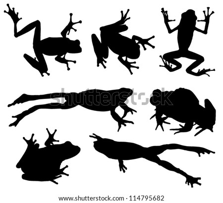 Frog Silhouette on white background - stock vector