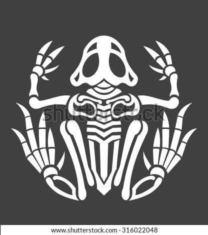 frog skeleton icon vector stock vector royalty free 316022048 rh shutterstock com Turtle Vector Cute Frogs
