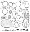 Fruit basic set, black and white, each in separated layer. Vector illustration. - stock photo