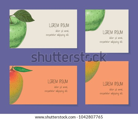 Fruit business cards template collection on stock vector 1042807765 fruit business cards template collection on a violet background apple mango flashek Choice Image