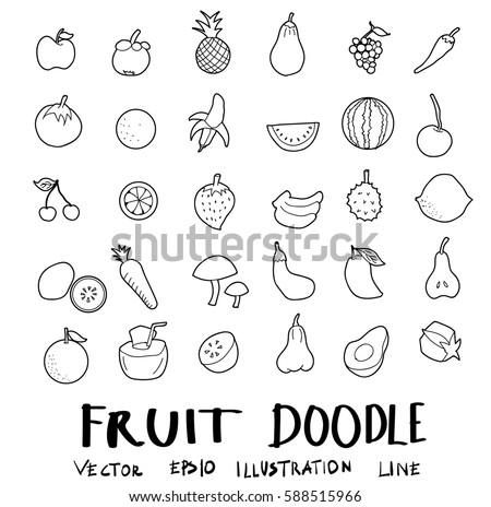 fruit drawing set doodles vector