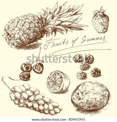 fruit - hand drawn collection, vector illustration - stock vector