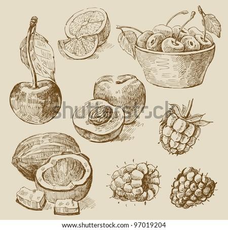 fruit - illustration - stock vector