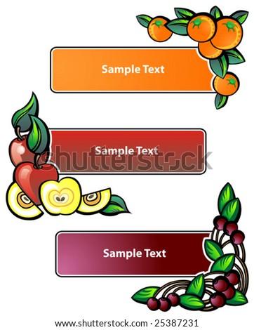 Fruit label. Vector illustration - stock vector