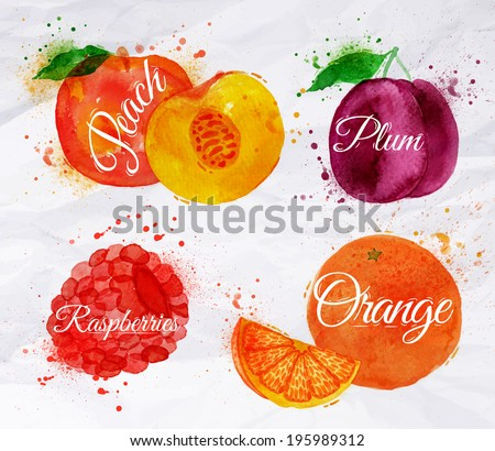 Fruit set drawn watercolor blots and stains with a spray peach, raspberry, plum, orange - stock vector