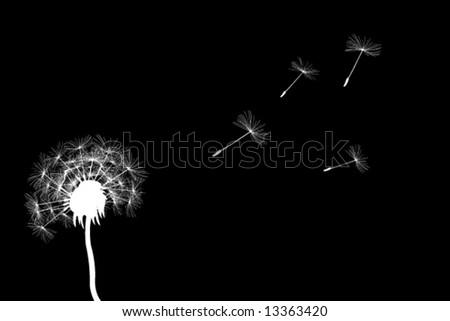 full dandelion in the wind in vector art - stock vector