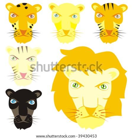 fully editable vector feline heads - stock vector