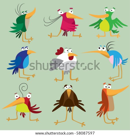 Funny bird collection