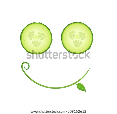 funny cucumber, vegetable healthy food concept, fresh face, green smile icon, Cucumber slices and leaf with curl on white background, vector.