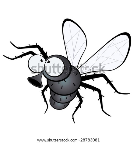 funny fly - stock vector