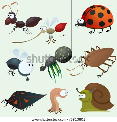 Funny insect set - stock vector