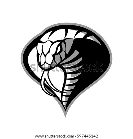 cobra vector stock images, royalty-free images & vectors