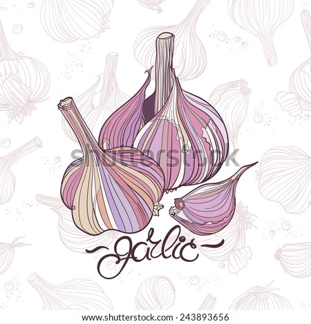 Garlic bulbs. Realistic shapes in natural colors. Two garlic bulbs and one clove on light seamless background with many different garlic drawings. - stock vector