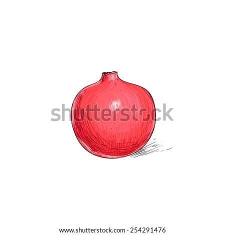 garnet fruit pomegranate sketch draw isolated over white background vector illustration - stock vector