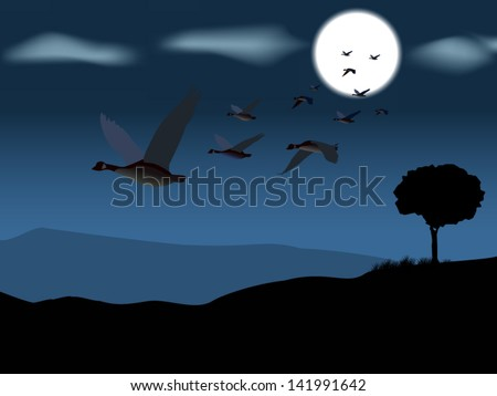 Geese flying low on a moonlit sky - stock vector