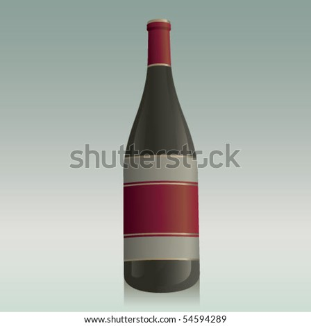 Generic Wine Bottle - stock vector