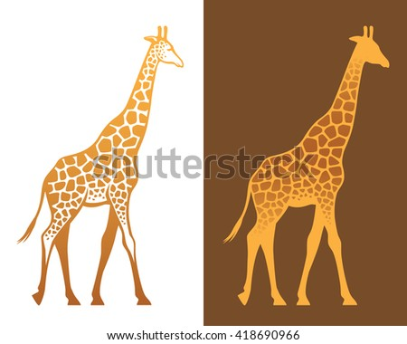 Giraffe with spots colorful illustration and silhouette isolated on white and brown backgrounds