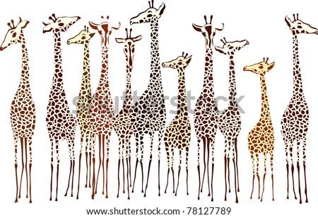 Giraffes - stock vector