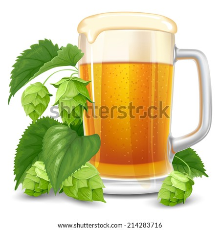 Glass of beer and hops isolated on white background - stock vector