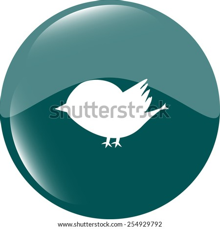 Glossy isolated website and internet web icon with bird symbol - stock vector