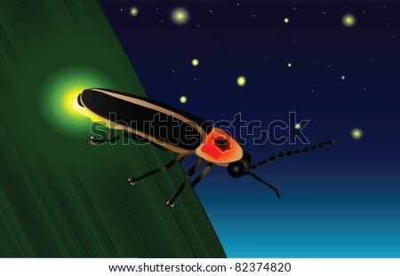 Glowing Firefly - stock vector