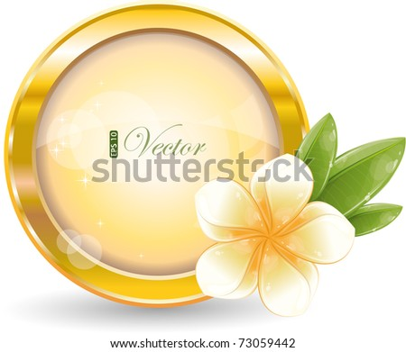 Gold circle frame with white frangipani flower, eps-10