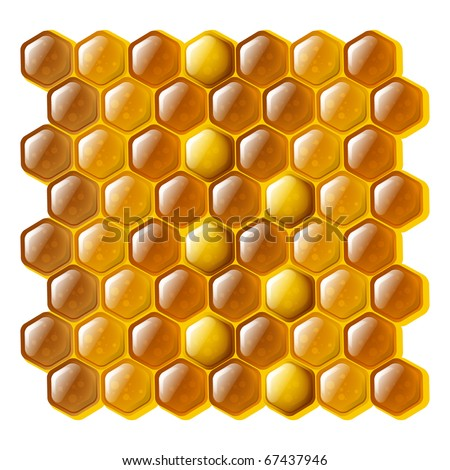 Golden and shiny cells of a honeycomb - stock vector