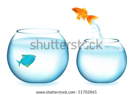 Golden Fish Jumping To Other Fish, Isolated On White - stock vector