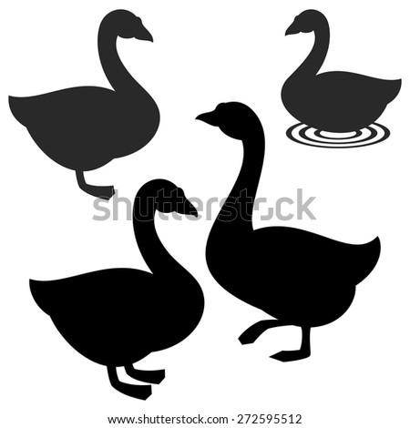 Goose - stock vector
