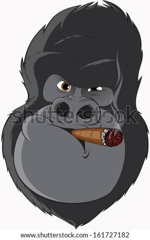 gorilla smoking a cigar - stock vector