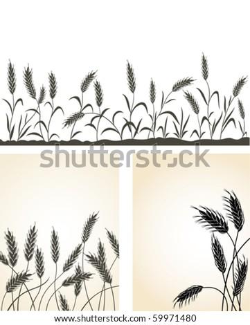 Grain ears. - stock vector