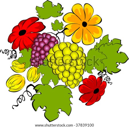Grape and flowers vector illustration - stock vector