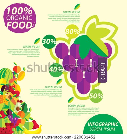 grape, infographics. fruits vector illustration.