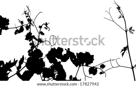 Grape leaf silhouette vector. See similar pictures in my portfolio. - stock vector