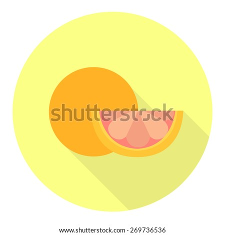 grapefruit flat icon. vector illustration - stock vector