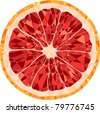 grapefruit mosaic - stock vector