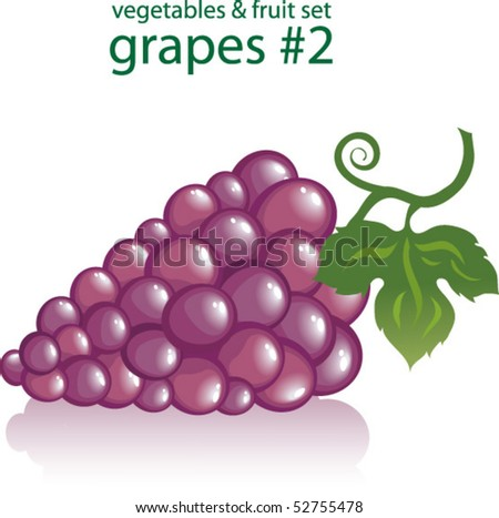 grapes #2 - stock vector