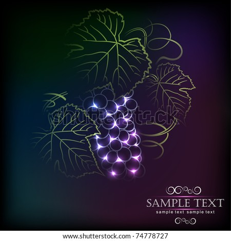 Grapes - stock vector