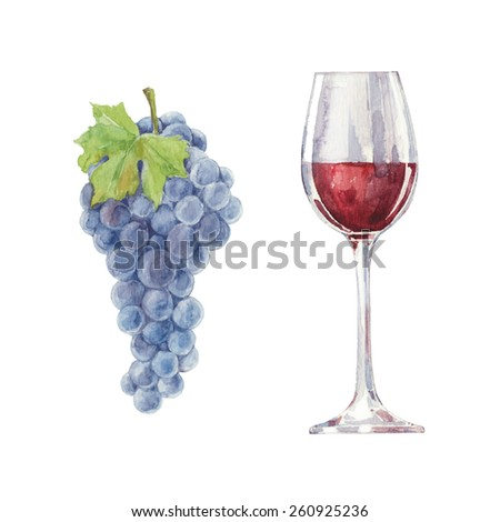 Grapes and red wine in a glass  isolated on a white background.Vector, watercolor hand drawn  illustration. - stock vector