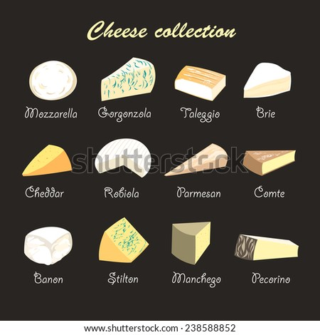 graphic beautiful collection of cheeses on a dark background - stock vector